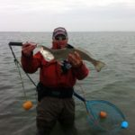 a fisherman with a large gator sea trout
