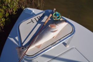 redfish on fly in rockport texas
